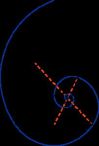 220px-Golden_triangle_and_Fibonacci_spiral.svg
